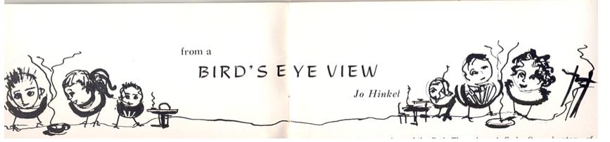 birds eye view header
